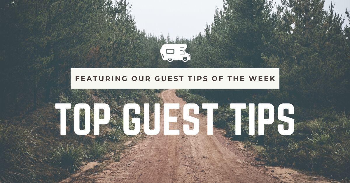 Top Guest Tips