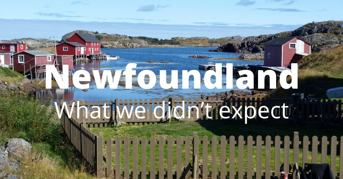Newfoundland - What we didn't expect